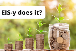 What are Enterprise Investment Schemes? post image