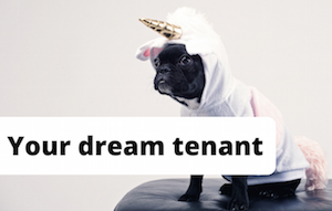 Dog dressed as unicorn to represent the dream tenant